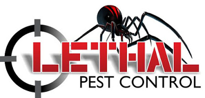 Pest Control Gold Coast